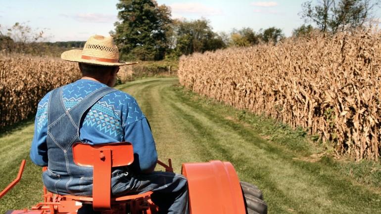 Ek 5 Tarım Sigortası Primi, Emeklilik Şartları ve Emekli Maaşı