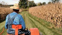 Çiftçi Belgesi Nedir? Nereden Alınır?
