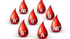 Kan Grubu Kartı Nereden Alınır? Sağlık Ocağı Verir mi?
