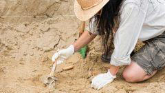 Arkeolog Nasıl Olunur? Ne Kadar Maaş Alır?