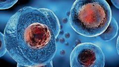 SGK Kök Hücre Tedavisini Karşılıyor mu? [GÜNCEL DURUM]