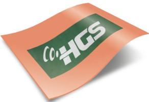HGS SORGULAMA